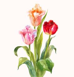 Unusual watercolor tulips bright flowers vector