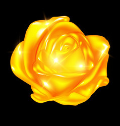 abstract golden rose vector image vector image