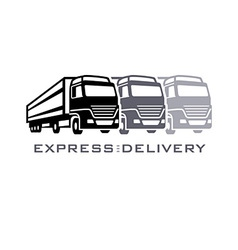 Express delivery vector image vector image