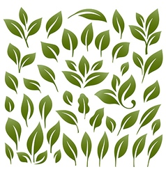 Leaves 2 vector image vector image