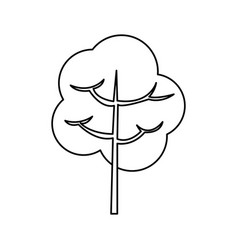 tree branch stem trunk natural line vector image