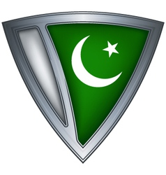 steel shield with flag pakistan vector image vector image