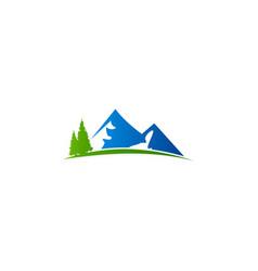 mountain hill pine tree logo vector image