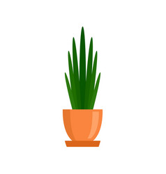 Long high leaf houseplant icon flat style vector
