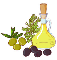 Olives and olive oil on white background vector