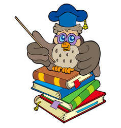 owl teacher sitting on four books vector image