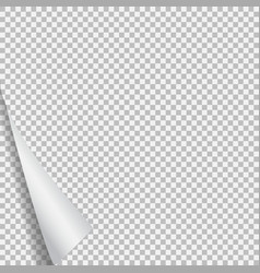 page curl with shadow on blank sheet of paper vector image