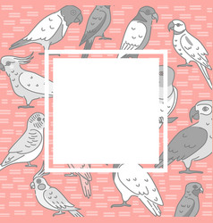 parrots background in line style with place for vector image