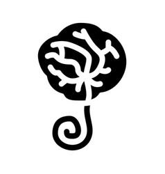 Placenta human icon glyph vector
