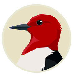Red headed woodpecker birds vector