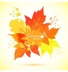 Watercolor foliage vector image