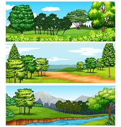 Three scenes of forest and fields vector image