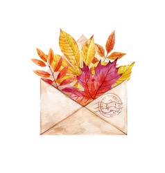 watercolor envelop with leaves vector image vector image
