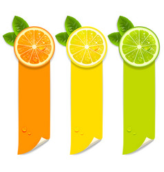 Banners with orange lemon and lime vector