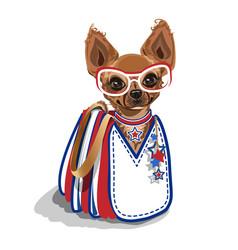 Fashionable bag with a small dog vector