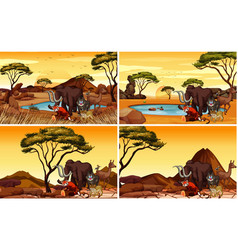 Four savanna scenes with many animals vector