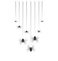 hanging spiders halloween set design vector image