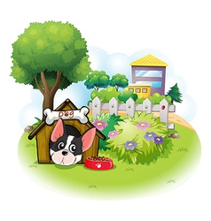 A dog with a doghouse across the high buildings vector image vector image