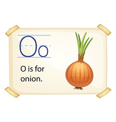 A letter O for onion vector