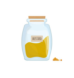 mustard powder stored in clear jar isolated on vector image