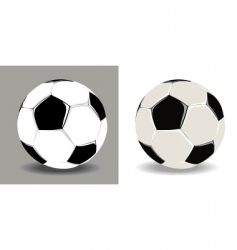 two isolated soccer balls vector image