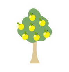 Apple tree isolated garden wood with apples on vector