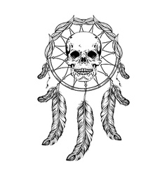 Dream catcher with feathers and leafs skull in vector image