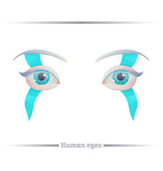 human eyes on a white background vector image