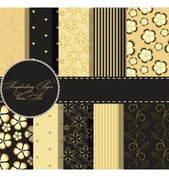 Set of beaautiful gold and black paper for vector