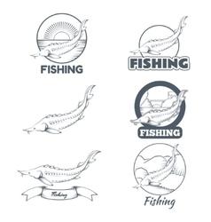 Set of sturgeon banners vector image