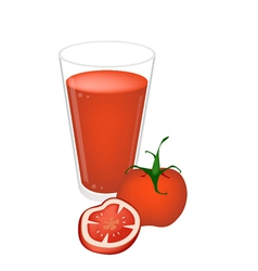 A Glass of Tomatoes Juice with Tomatoes Fruit vector image