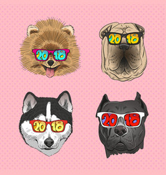 Dog wearing sunglasses year of the vector