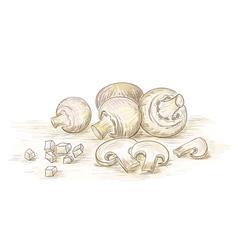 Hand drawn champignons vector image