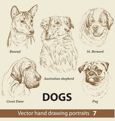 set hand drawing dogs 7 vector image