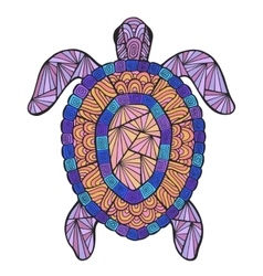 stylized turtle with ethnic pattern vector image