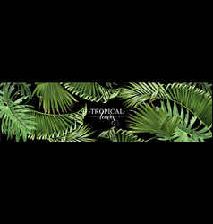 Tropical leaves web banner vector
