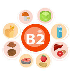 Vitamins and minerals foods set 7 vector