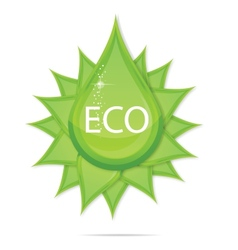 creative eco green drop symbol vector image