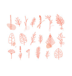 floral flat leaves set white vector image