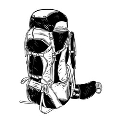 hand drawn sketch camping backpack in black vector image
