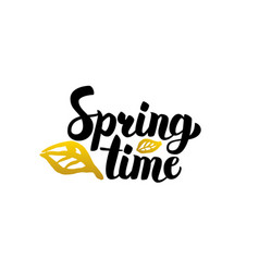 spring time handwritten lettering vector image