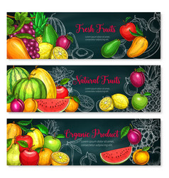 Banners of exotic fresh fruits vector