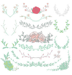 Drawn herbs plants and flowers vector