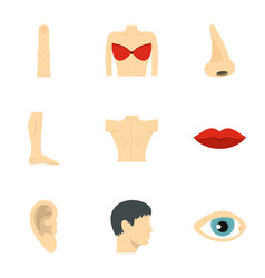 human anatomy icons set flat style vector image vector image
