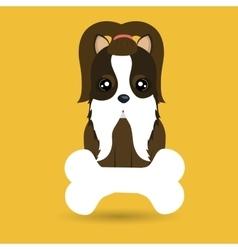 Dog pet bone icon vector