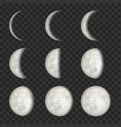 set of moon phases on transparent vector image