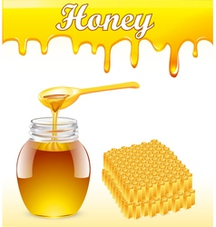 Background with streaks of honey vector