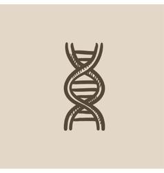 DNA sketch icon vector image