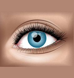 Human eye realistic 3d image vector