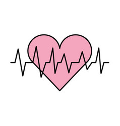 Medical heart beat cardiology diagnosis vector